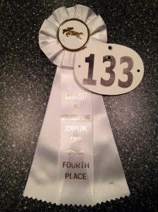 4th in the jumpers on my future Eq horse? I'll take it.