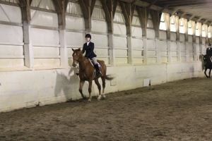 Hailee on Hamilton in Advanced Walk Trot Canter