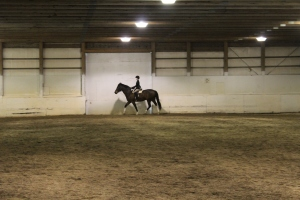 Bella on Mojo in Advanced Walk Trot Canter call backs