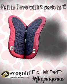 I love ECOGOLDs February advertising!