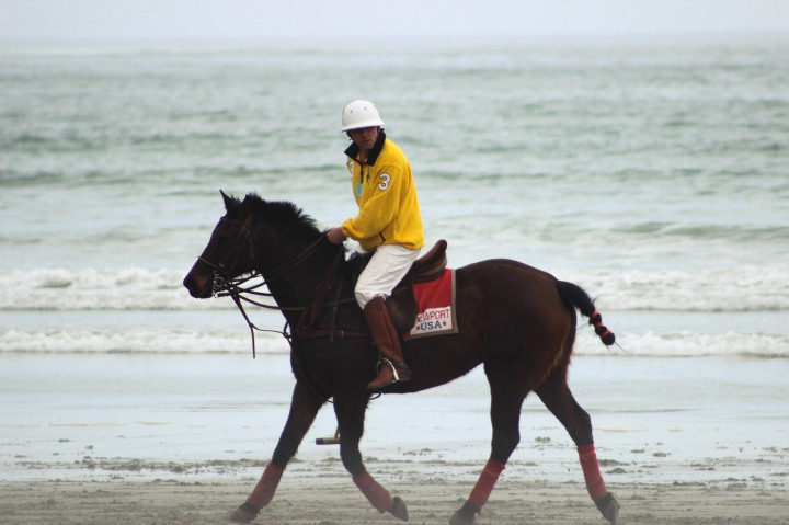newport-beach-polo-068