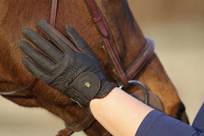 gloves_079